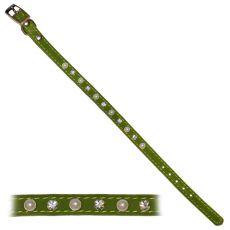 Obojek pro psa s ozdobami, zelený – 1,2 x 28 – 33,5 cm