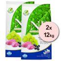 Farmina N&D dog GF ADULT Lamb & Blueberry 2 x 12 kg
