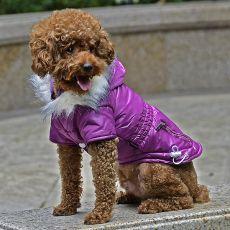 Bunda pro psa s imitací kapes na zip - fialová, XS