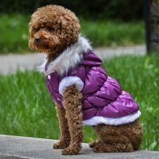 Bunda pro psa s odepínatelnou kapucí - fialová, XS