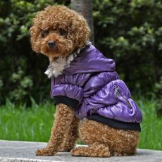 Bunda pro psa s černým lemováním - fialová, XS