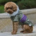 Bunda pro psa s nášivkou - zelená, XL