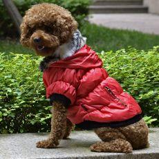 Bunda pro psa s černým lemováním - červená, S