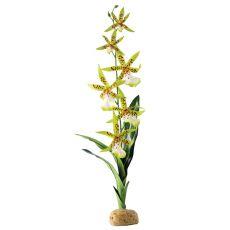 Exo Terra rostlina do terária - Spider Orchid, 45 cm