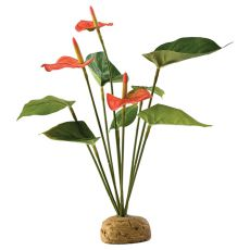 Exo Terra rostlina do terária - Anthurium bush, 30 cm