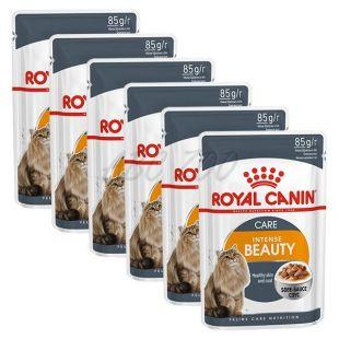 Royal Canin Intense BEAUTY 6 x 85g - kapsička