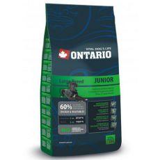 Ontario Junior Large - 13 kg