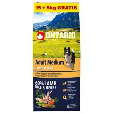 ONTARIO Adult Medium Lamb & Rice 15+5kg ZDARMA