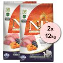 Farmina N&D dog GF PUMPKIN adult medium/maxi, lamb & blueberry - 2 x12 kg
