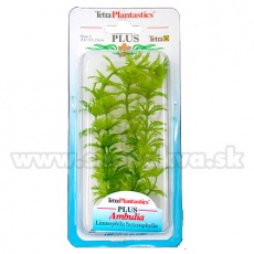 Limnophila sessiliflora (Ambulia) - rostlina Tetra 15 cm