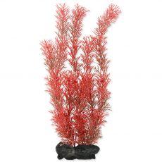 Myriophyllum heterophyllum (Red Foxtail) - rostlina Tetra 30 cm, L