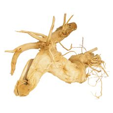 Kořen do akvária Cuckoo Root - 32 x 21 x 16 cm