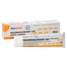Pasta APTUS – RECONVALESCENT CAT 60 g