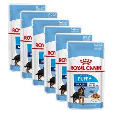 Kapsička Royal Canin Maxi Puppy 6 x 140 g
