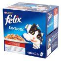 Felix Fantastic – mäso v želé, 24 x 100 g
