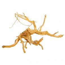 Kořen do akvária Cuckoo Root - 58 x 44 x 35 cm