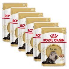 Royal Canin Adult PERSIAN – kapsička, 6 x 85 g