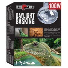 Žárovka REPTI PLANET Daylight Basking Spot 100 W