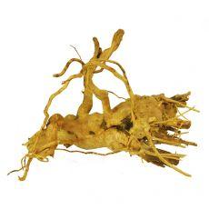 Kořen do akvária Cuckoo Root - 21 x 20 x 14 cm