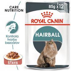 Royal Canin HAIRBALL CARE - kapsička 12 x 85 g