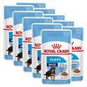 Kapsička Royal Canin Maxi Puppy 10 x 140 g