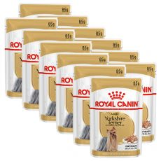 ROYAL CANIN ADULT YORKSHIRE 12 x 85 g - kapsička