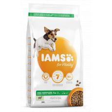Iams Dog Adult Small Medium, Lamb 3 kg