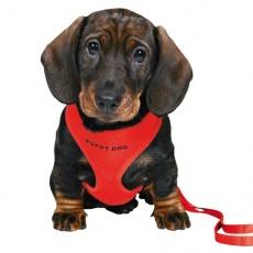 Postroj a vodítko pro štěně - červený
