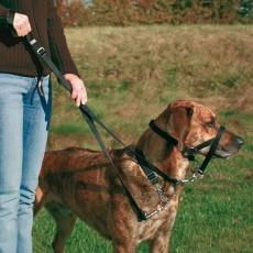 Postroj pro psa tréninkový - S, 22 cm