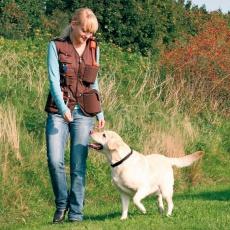Výcviková vesta Dog activity - hnědá, L