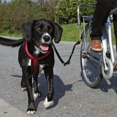 Set pro cyklisty na uvázání velkého psa ke kolu