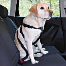 Postroj pro psa do auta, bezpečnostní - M, 50–70 cm