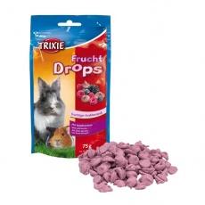 Pamlsky pro hlodavce -  ovocné dropsy, 75 g