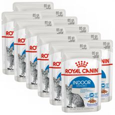 Royal Canin Indoor Sterilised In Jelly Pouch 12 x 85 g