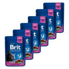 Kapsička BRIT Premium Cat Chicken & Turkey 6 x 100 g