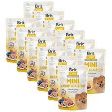 Brit Care MINI Rabbit & Salmon 12 x 85 g