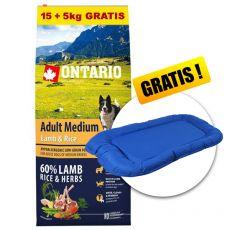 ONTARIO Adult Medium Lamb & Rice 15+5kg ZDARMA + DÁREK