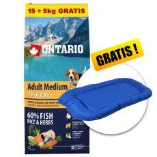 ONTARIO Adult Medium 7 Fish & Rice 15+5kg ZDARMA+ DÁREK
