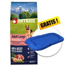 ONTARIO Adult Large Beef & Rice 12 kg  + DÁREK