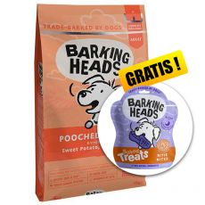 BARKING HEADS Pooched Salmon ADULT 12 kg + DÁREK