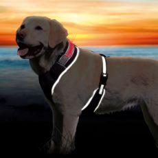 Postroj pro psa se světelným páskem L-XL, 65-100 cm