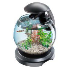 Akvárium pro bojovnici nebo karase - koule 6,8 L