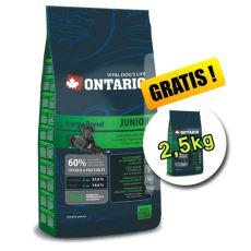 Ontario Junior Large 13 kg + 2,5 kg GRATIS