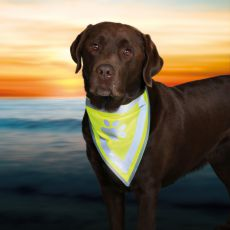 Reflexní šátek pro psa s potiskem - velikost S-M