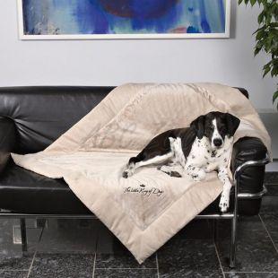 Deka pro psa King of Dogs, oboustranná - 100x70 cm