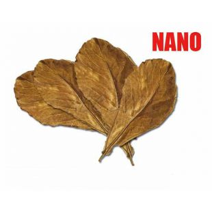 Mandlovník mořský - listy sušené NANO, 12 ks