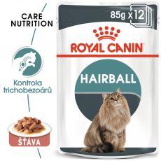 Royal Canin HAIRBALL CARE - kapsička 85 g