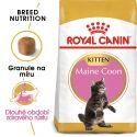 ROYAL CANIN Maine Coon Kitten granule pro mainská mývalí koťata 10 kg