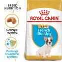 ROYAL CANIN FRENCH BULLDOG JUNIOR - 3 kg